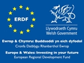 ERDF: European Regional DEvelopment Fund